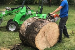Fishers-Tree-Cutting-Service