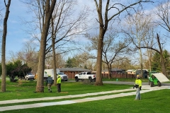Tree-Service-Indianapolis_0000_5