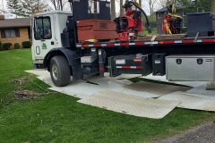 Tree-Service-Indianapolis_0001_4